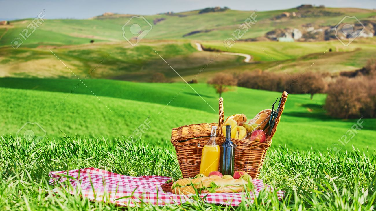 Tuscan picnic on the green spring grass with landscape in the background - 38485710