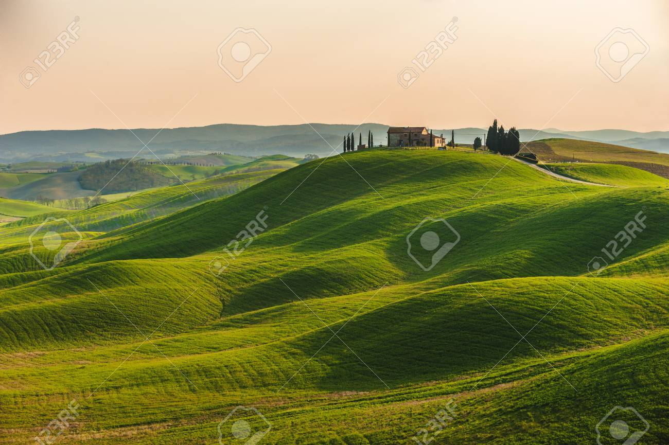 Spring in the fields of Tuscany in the sunset - 39267733