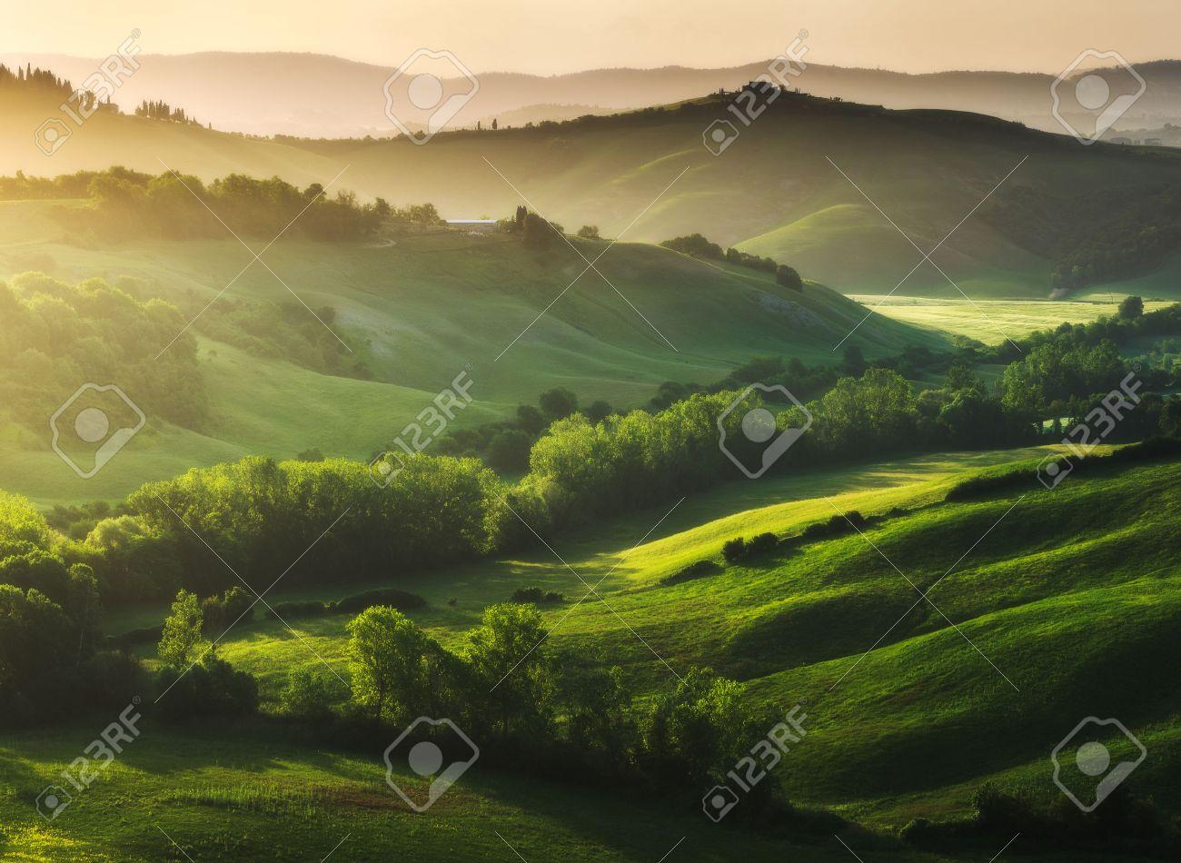 Beautifully illuminated landscape of Tuscany - 42729399