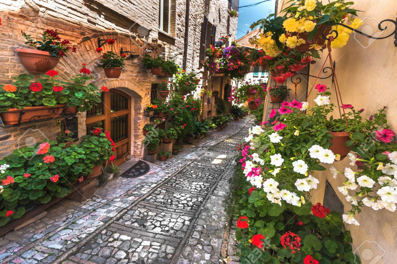 Floral street in central Italy, in the small Umbrian medieval town, Italy - 44015355