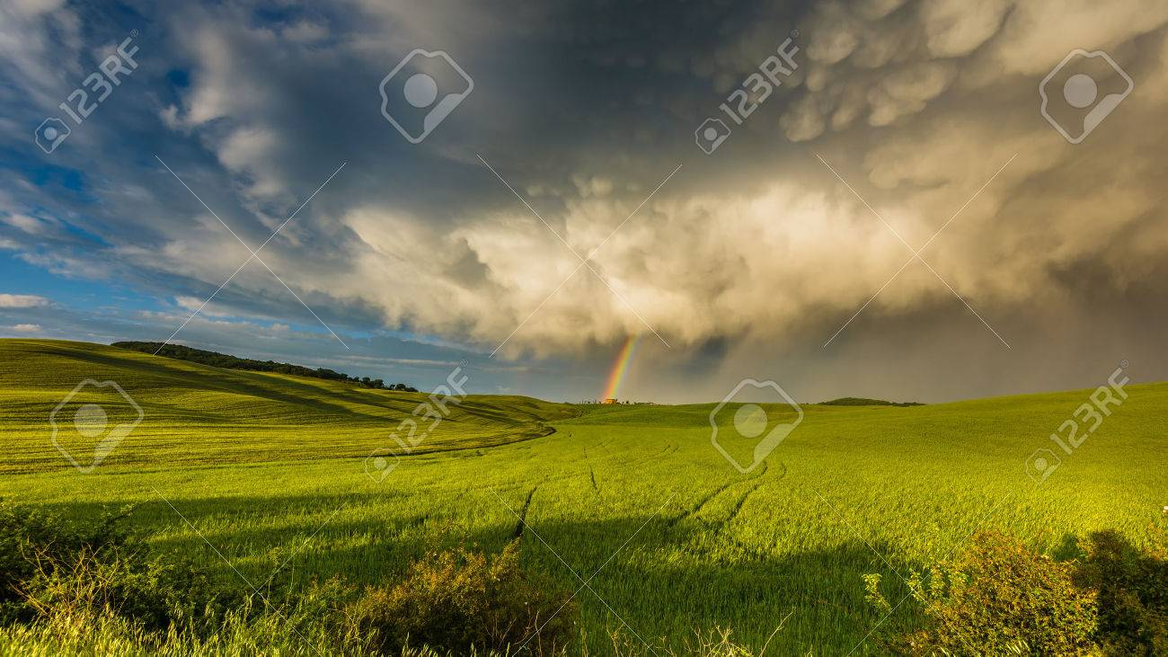 Rainbow over the field after a spring rain storm - 58814110