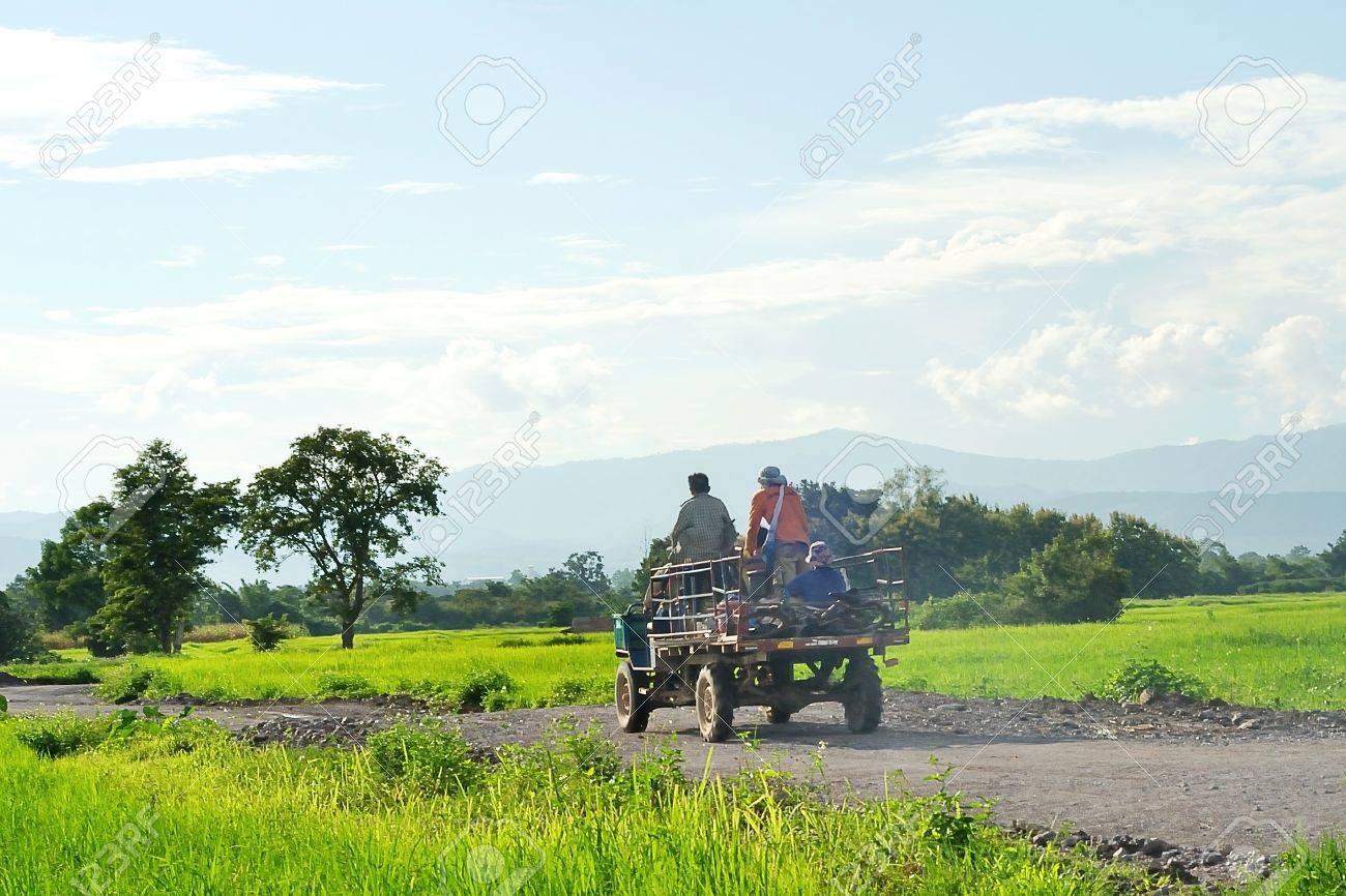 Farmer's truck in rice field - 10460410