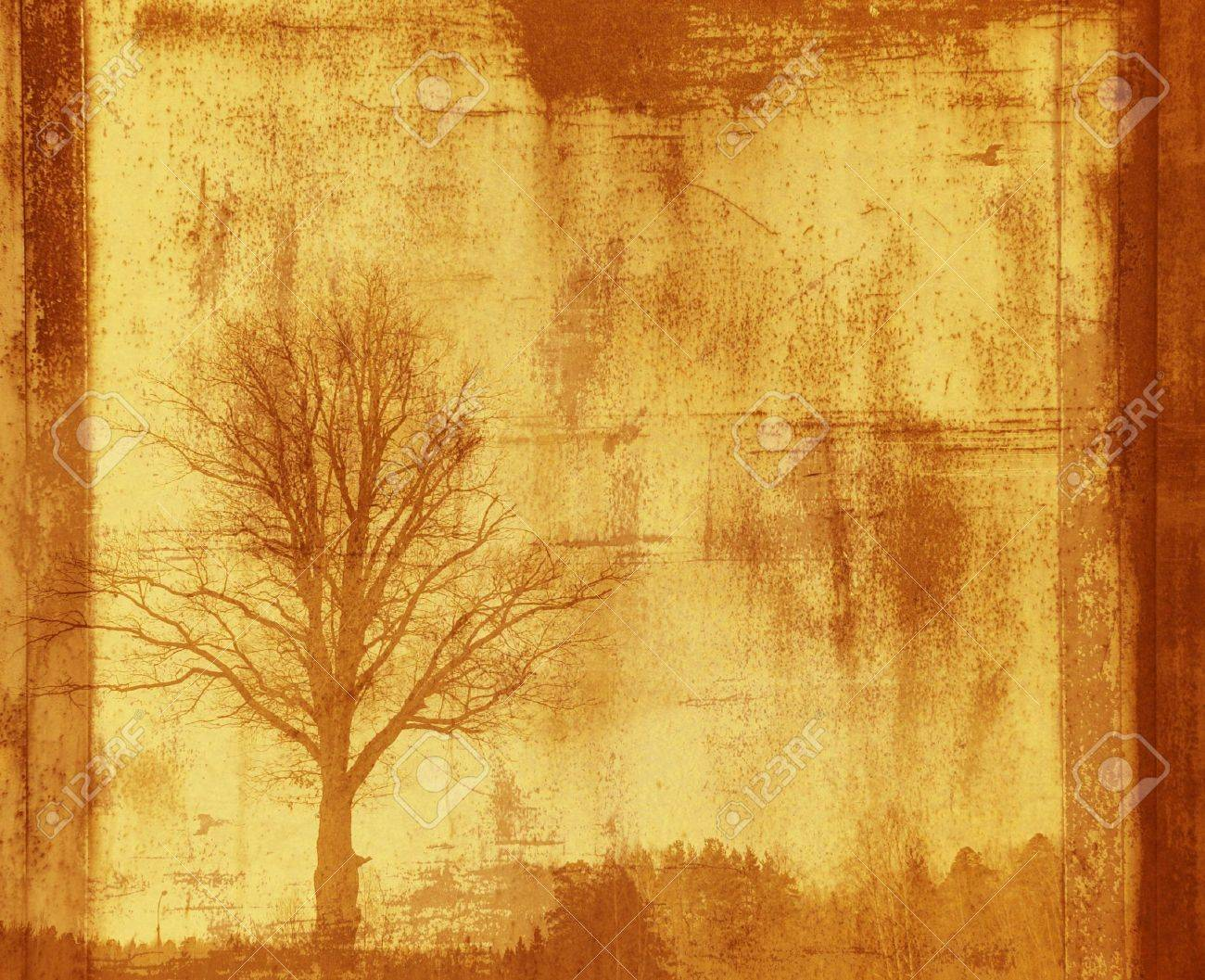 grunge frame with tree silhouette Stock Photo - 390795