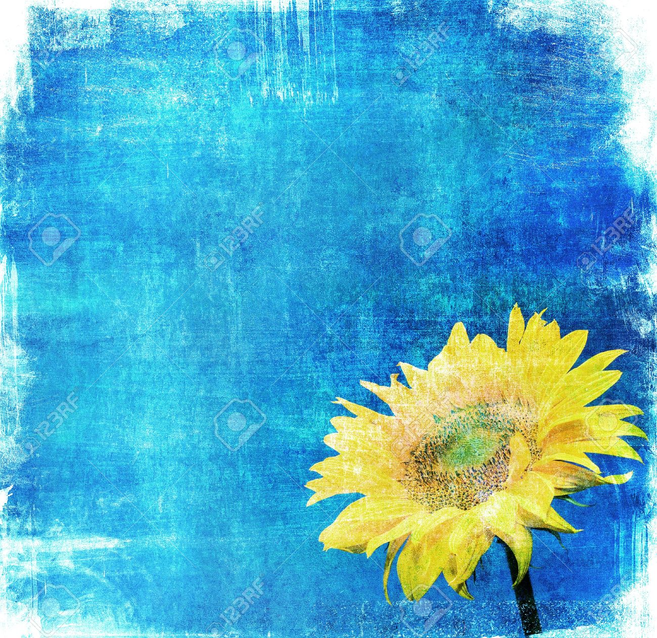 Vintage Image Of Sunflower On Grunge Background Stock Photo Picture