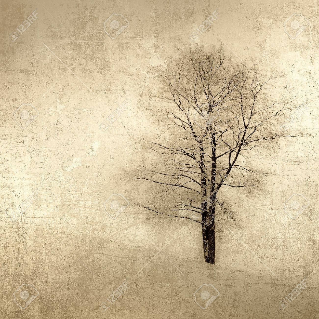 grunge image of a tree over vintage background Stock Photo - 16246630