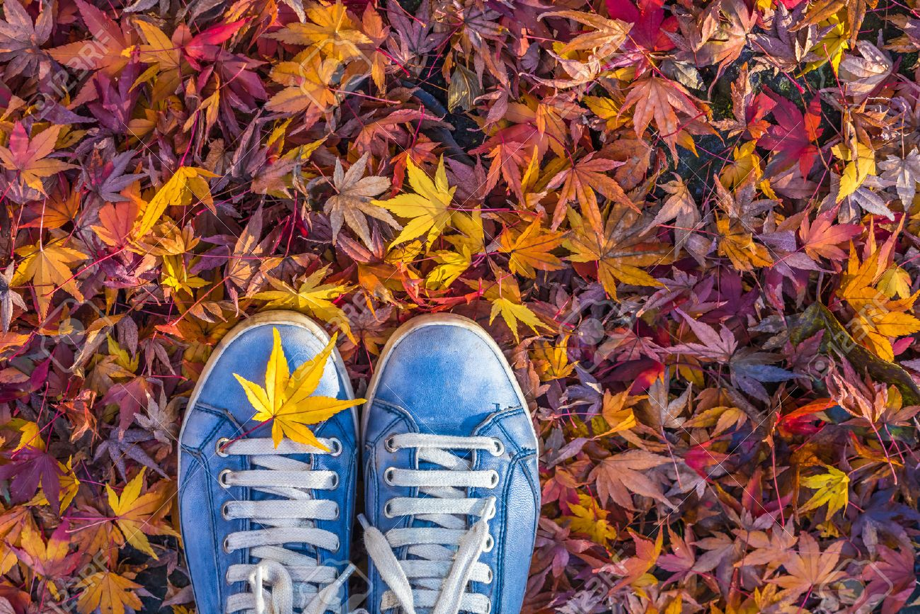 Autumn season in hipster style shoes Stock Photo - 44295286