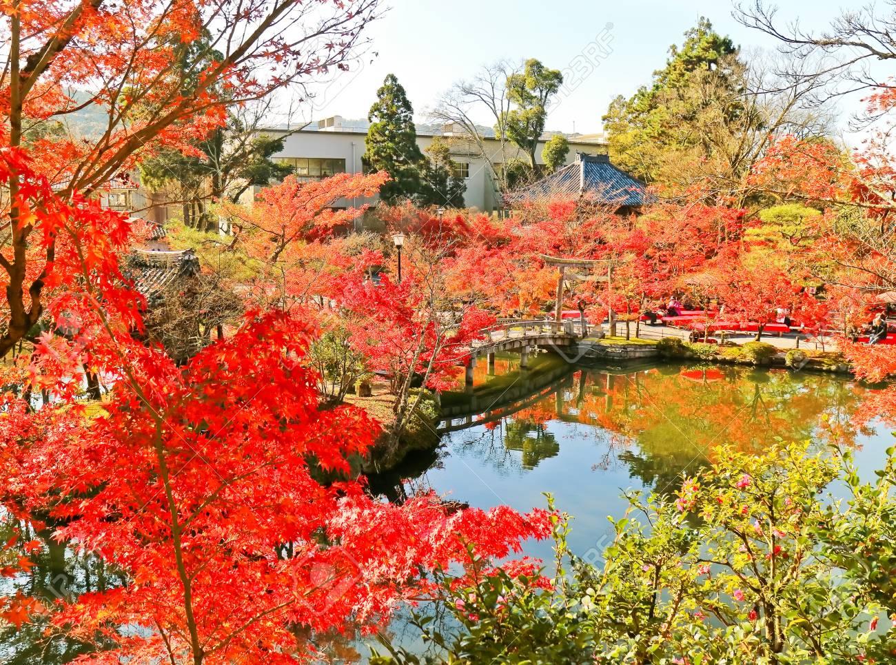 Vue Du Jardin Japonais En Automne A Kyoto Japon Banque D Images Et