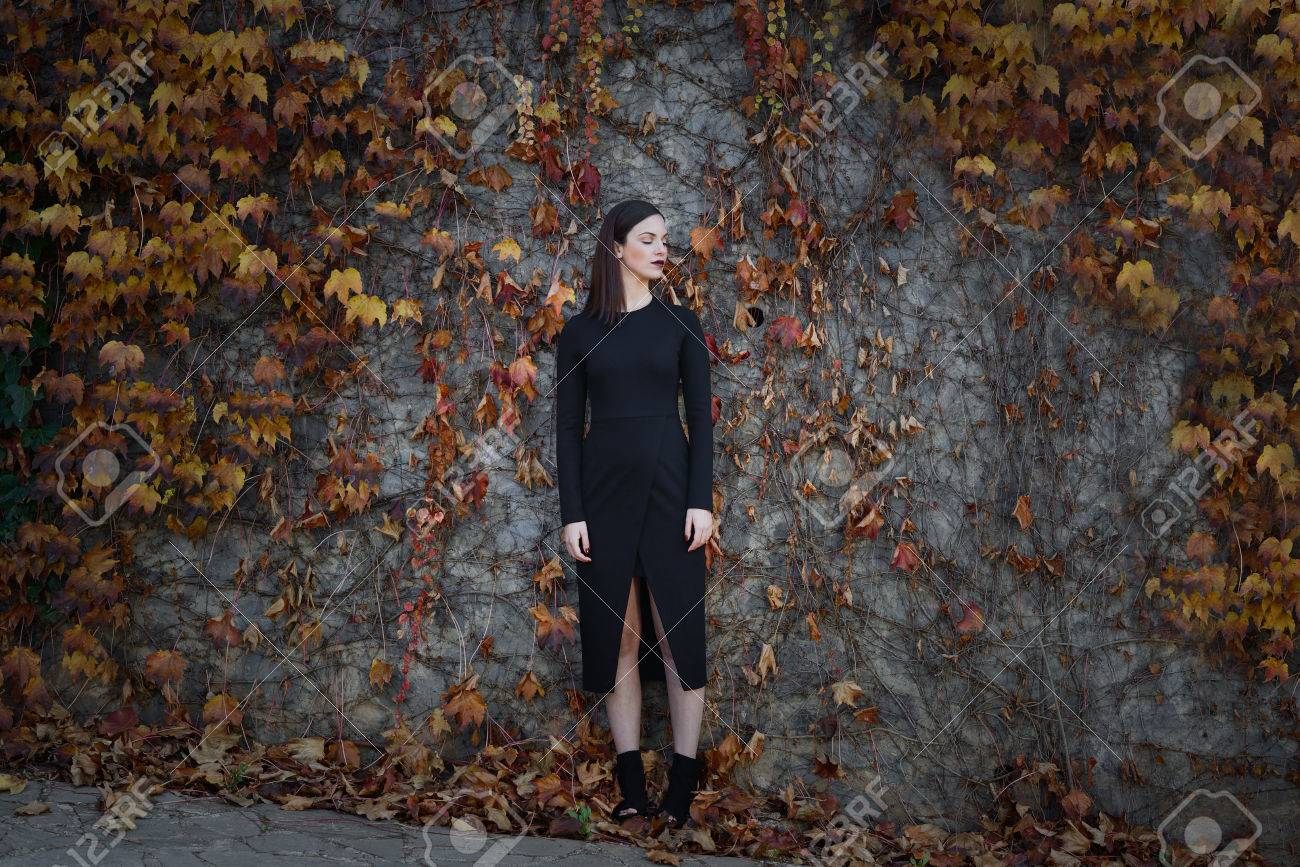 Beautiful young woman, model of fashion, on wall full of autumn leaves, with eyes closed. Fine art photograph - 50534884