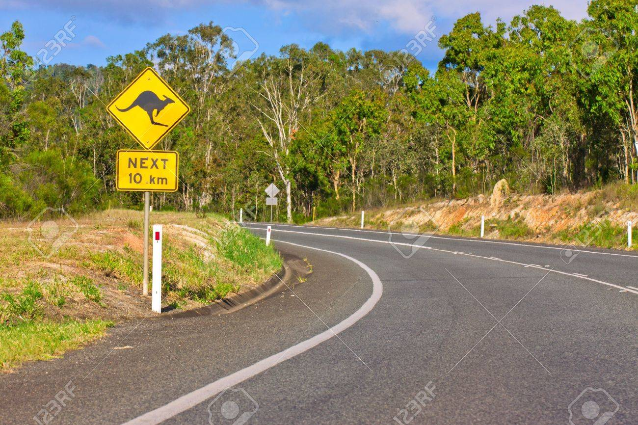 An Australian kangaroo warning sign on the side of a road Stock Photo - 8276238