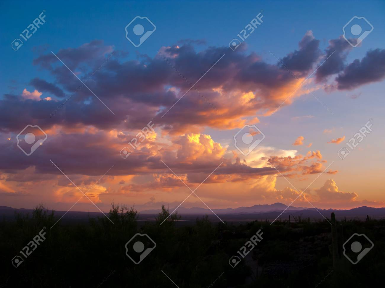 Clouds and Sunset or Sunrise with Silhouette Cactus in the Sonoran Desert - 80852580