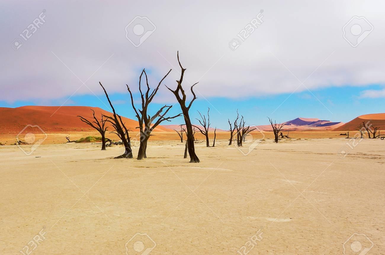 namibie paysage desert