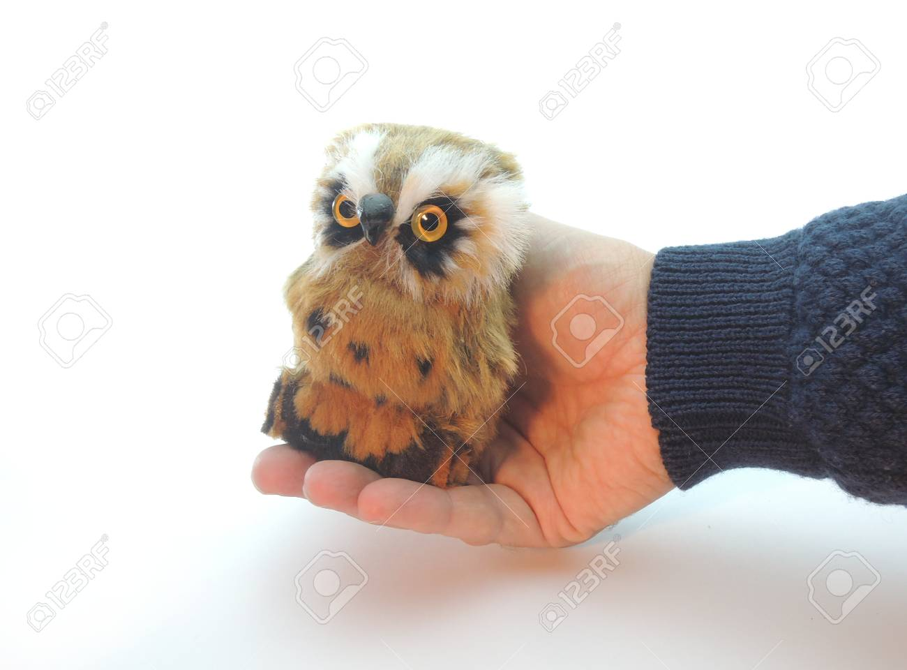 Knowledge Transfer Symbolized By Handing Over An Owl A Symbol