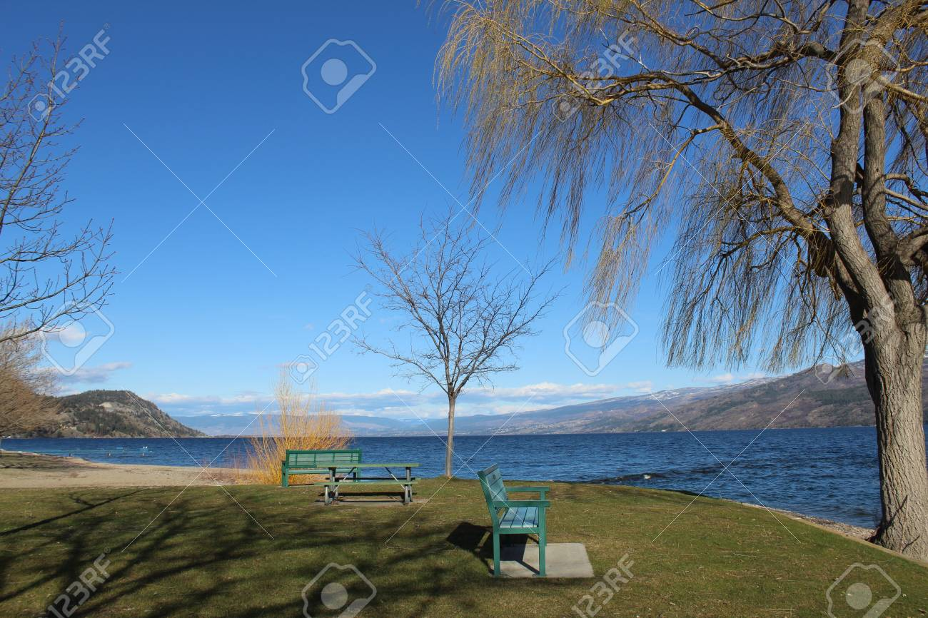 Tremendous Scenic Park By The Lake In Spring With Park Benches And Picnic Caraccident5 Cool Chair Designs And Ideas Caraccident5Info
