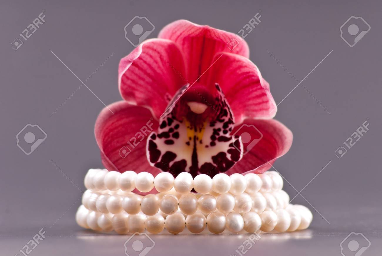 3 Row Freshwater Pearl Bracelet Gift with Orchid Stock Photo - 8855427