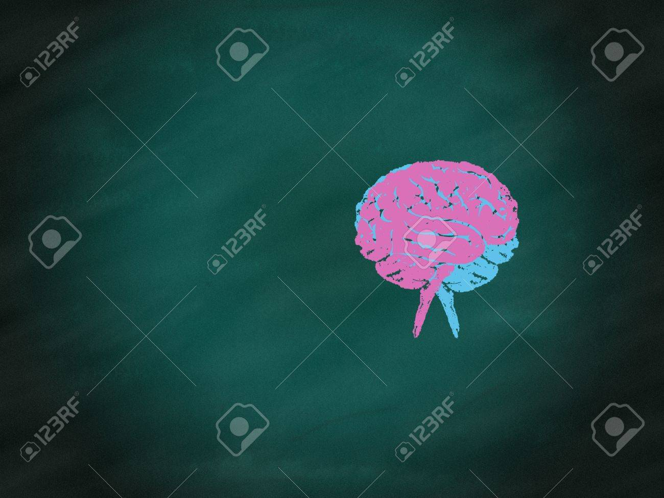 Brainstorming concept,drawing of brain maze puzzle on green chalkboard Stock Photo - 14199117