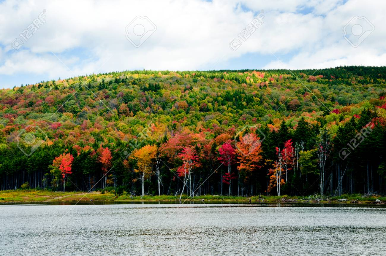Trees Are Changing Colors Along Shaver\'s Lake In West Virginia ...