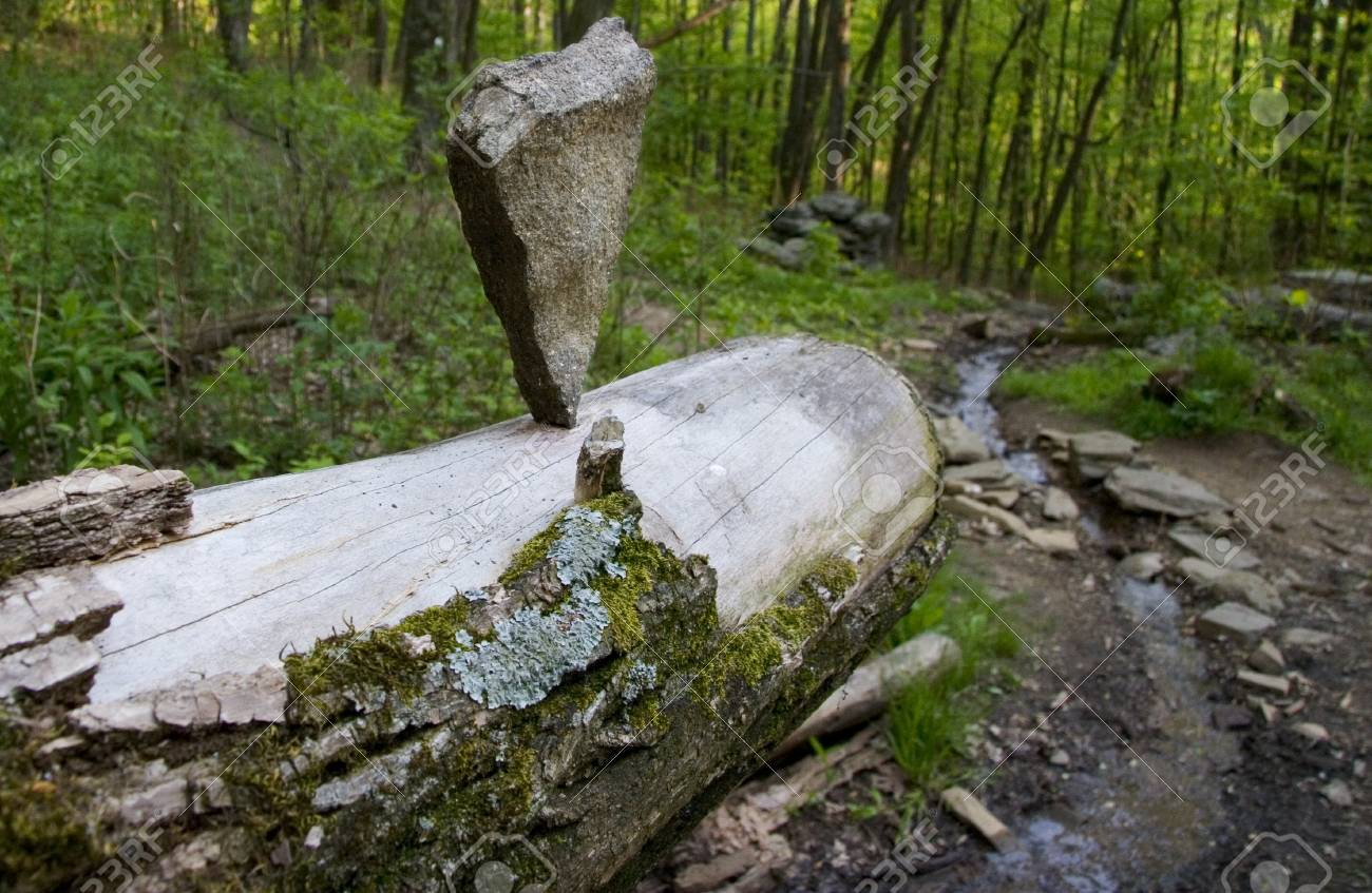 A balancing cairn on a dead tree Stock Photo - 18134294