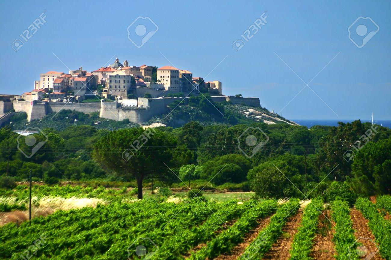 Corse paysages de la ville de Calvi Banque d'images - 12621211