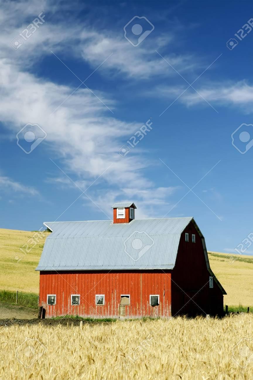 bright barn in an open field Stock Photo - 4000753