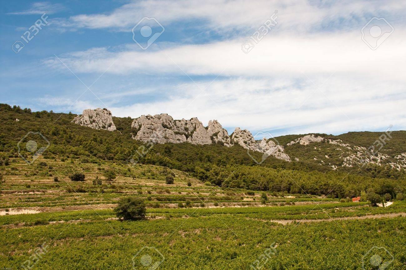Dentelles de Montmirail en Provence, France Banque d'images - 10281633