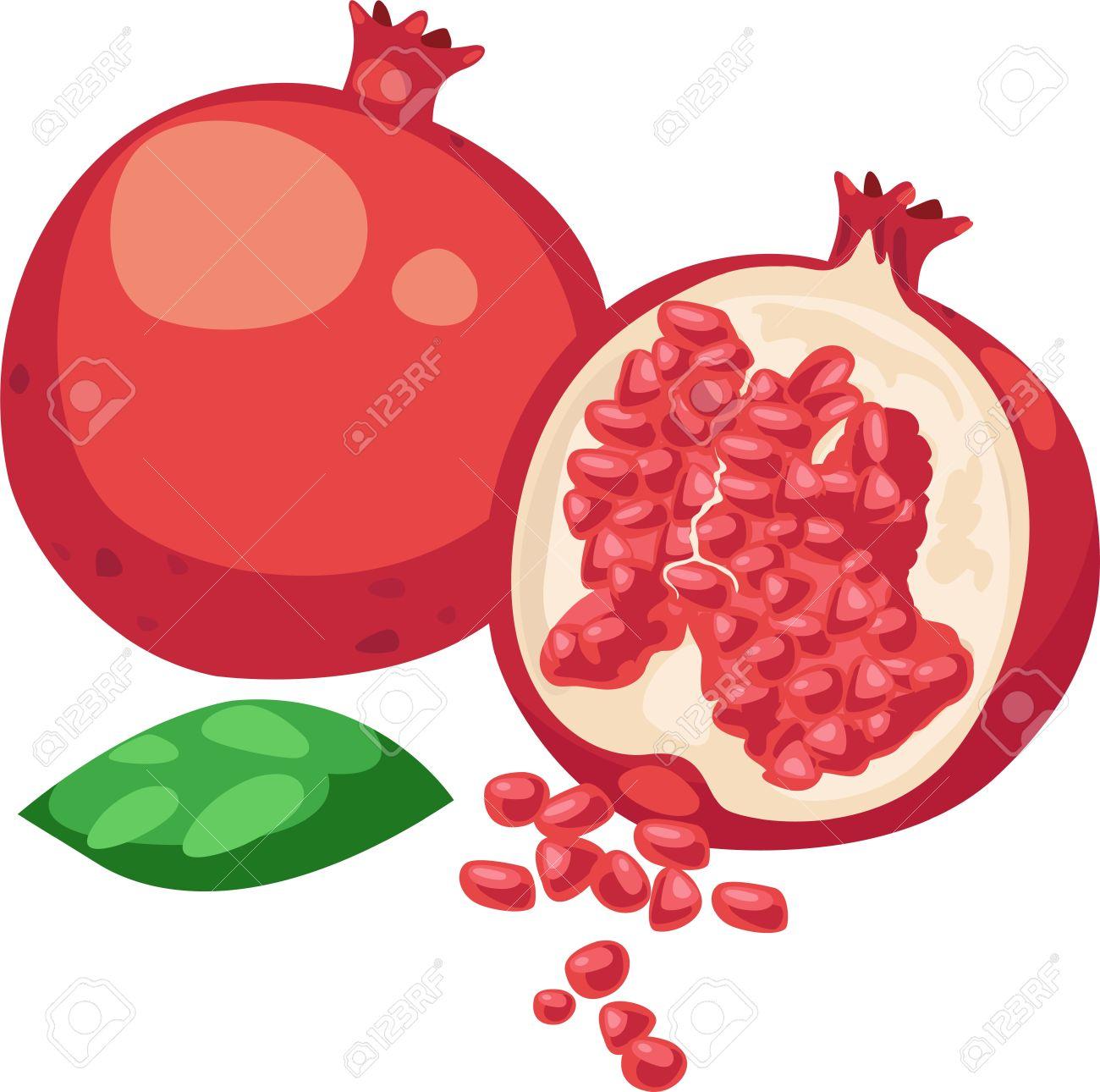 Fruta Vectorial Ilustración Vectorial Fruta de