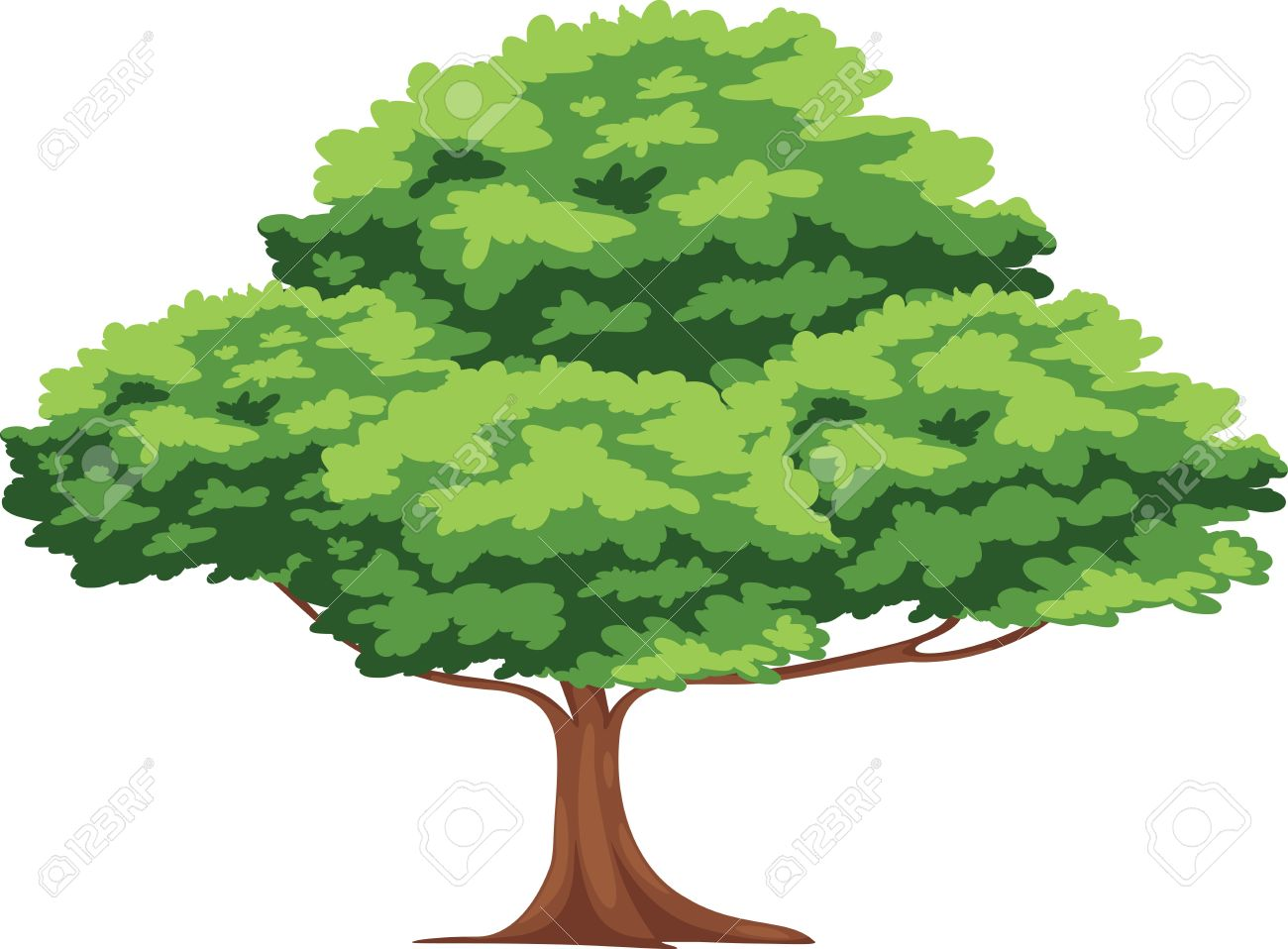tree vector royalty free cliparts vectors and stock illustration rh 123rf com vector tree with roots vector tree rings