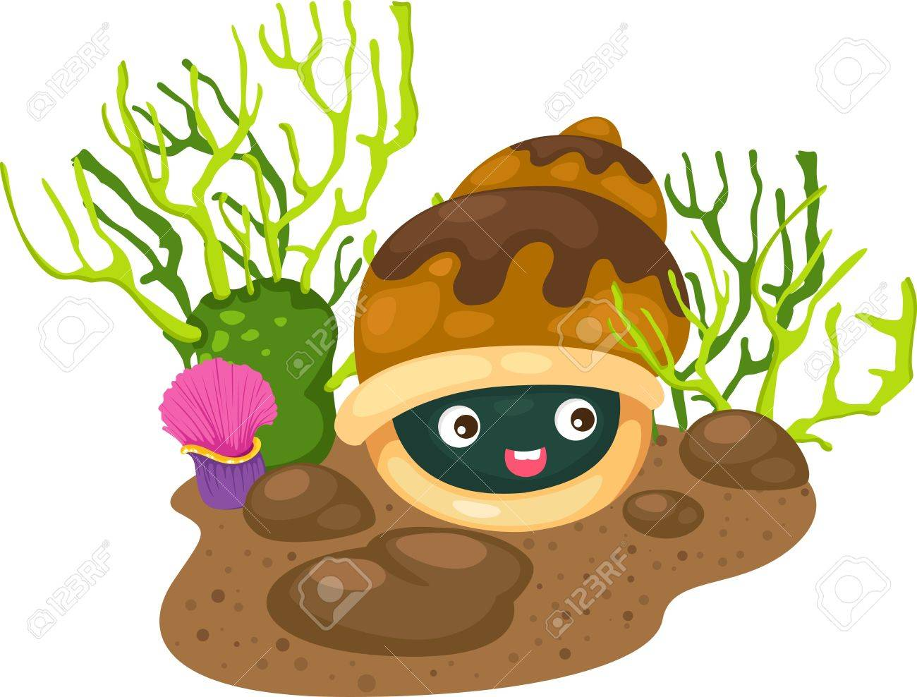 illustration coral and shells vector Stock Vector - 19190351
