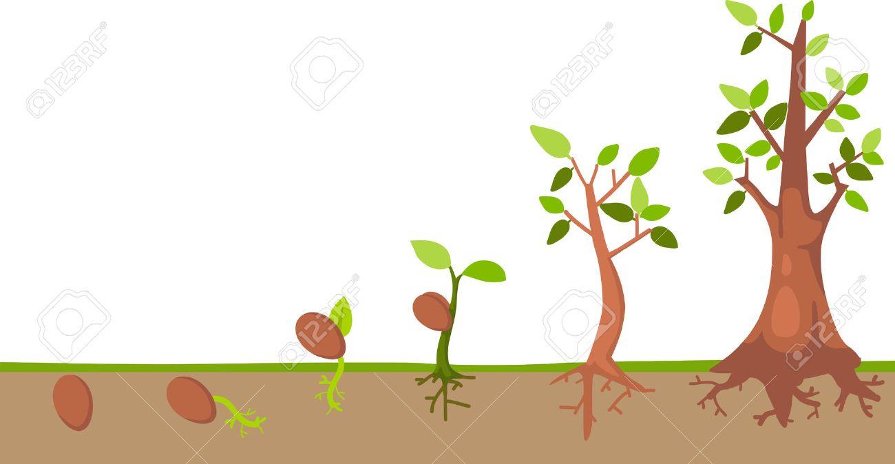 tree life cycle vector royalty free cliparts vectors and stock rh 123rf com disney tree of life clipart Tree Hole Clip Art