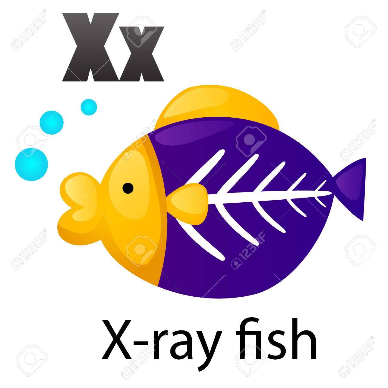 X-ray Tetra Drawings Alphabet x With X-ray Fish
