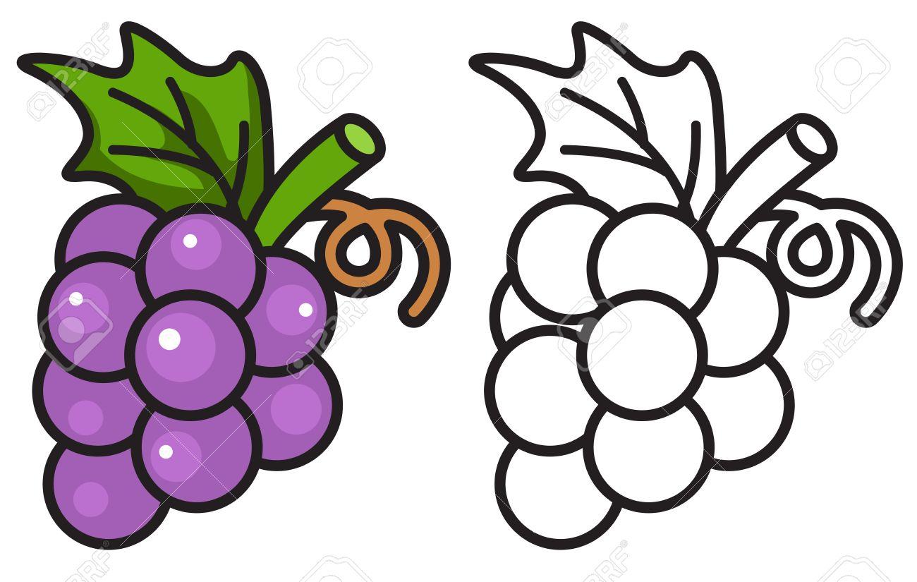 Ilustración De Uvas De Colores Y Blancos Y Negros Aislados Para Libro Para Colorear