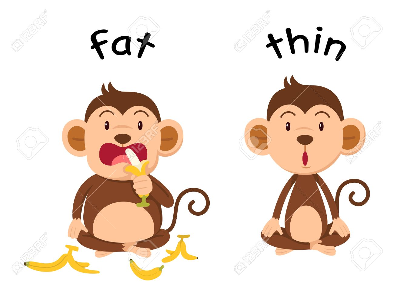 Opposite words fat and thin illustration - 56409094