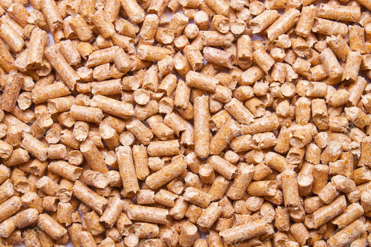 pet food pellets stock photo picture and royalty free image image