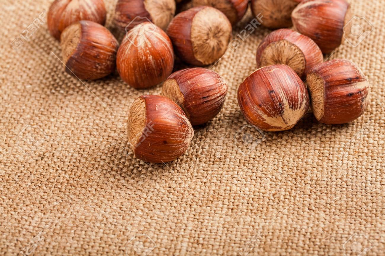 Filberts on a burlap background  Close-up shot Stock Photo - 17475282