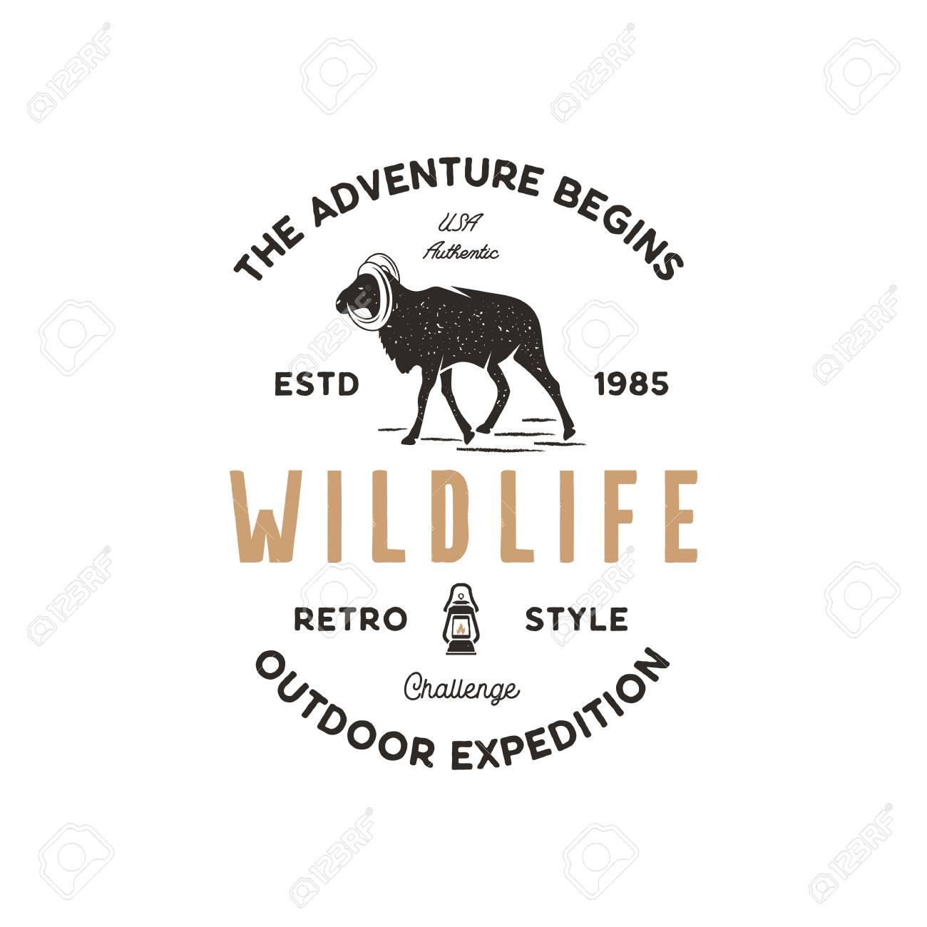 Adventure design  Camping adventures badge template  Wild goat