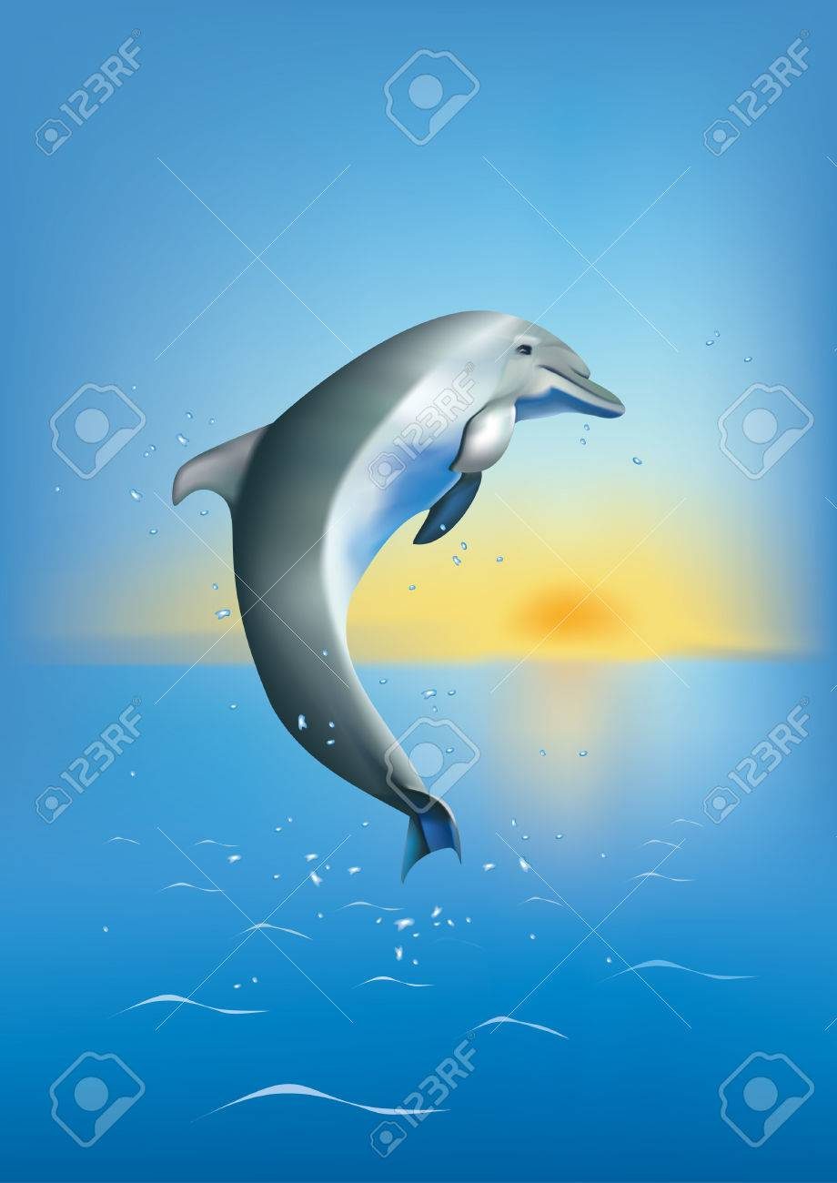 a dolphin diving in the sea on background og sunset Stock Vector - 5788172