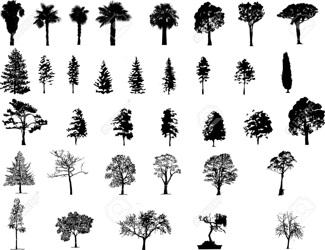 78,009 Pine Tree Cliparts, Stock Vector And Royalty Free Pine Tree ...