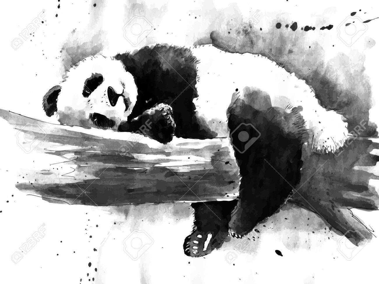 Watercolor black and white panda drawing - 57468448