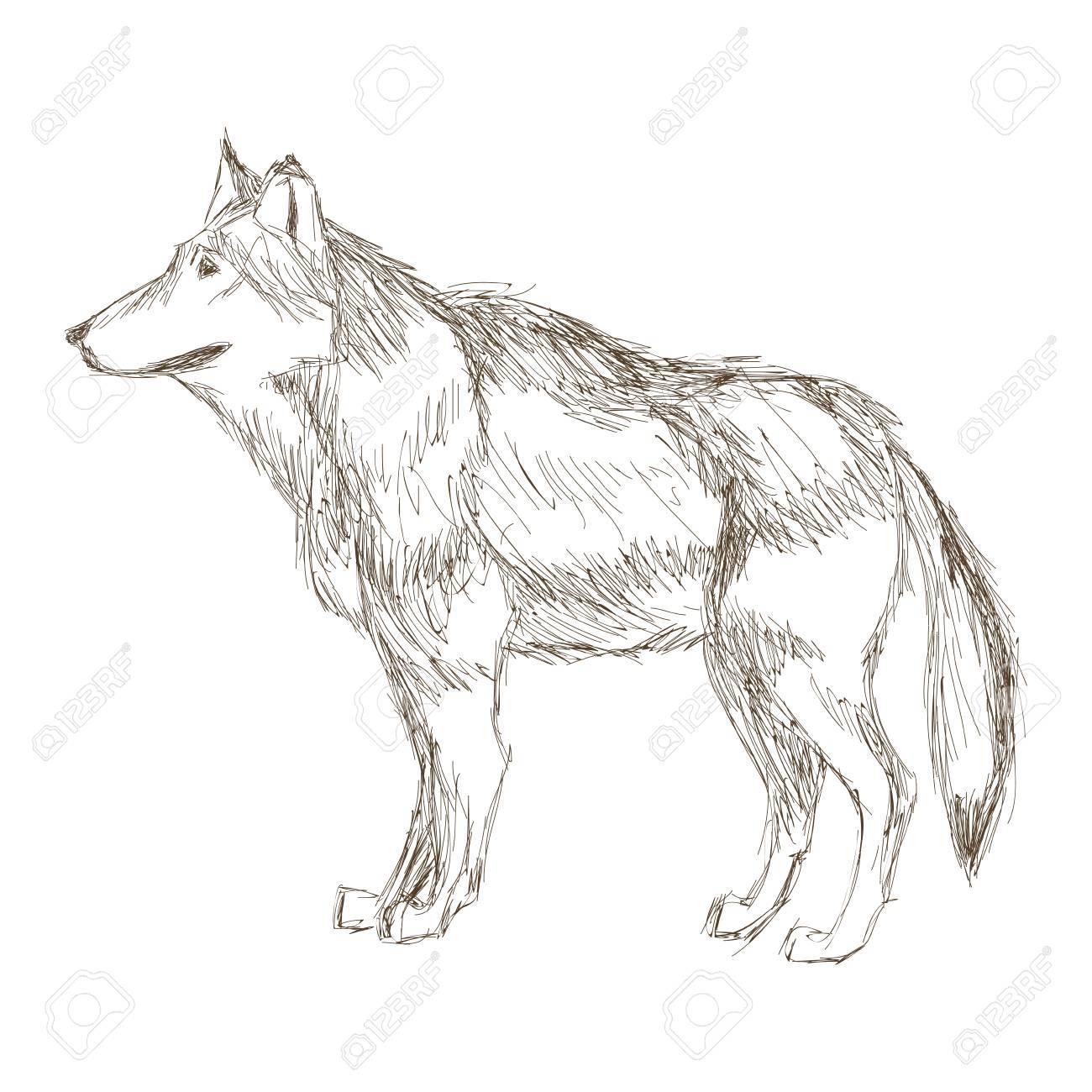 シンプルなフラット デザイン狼横顔スケッチ アイコン ベクトル イラスト