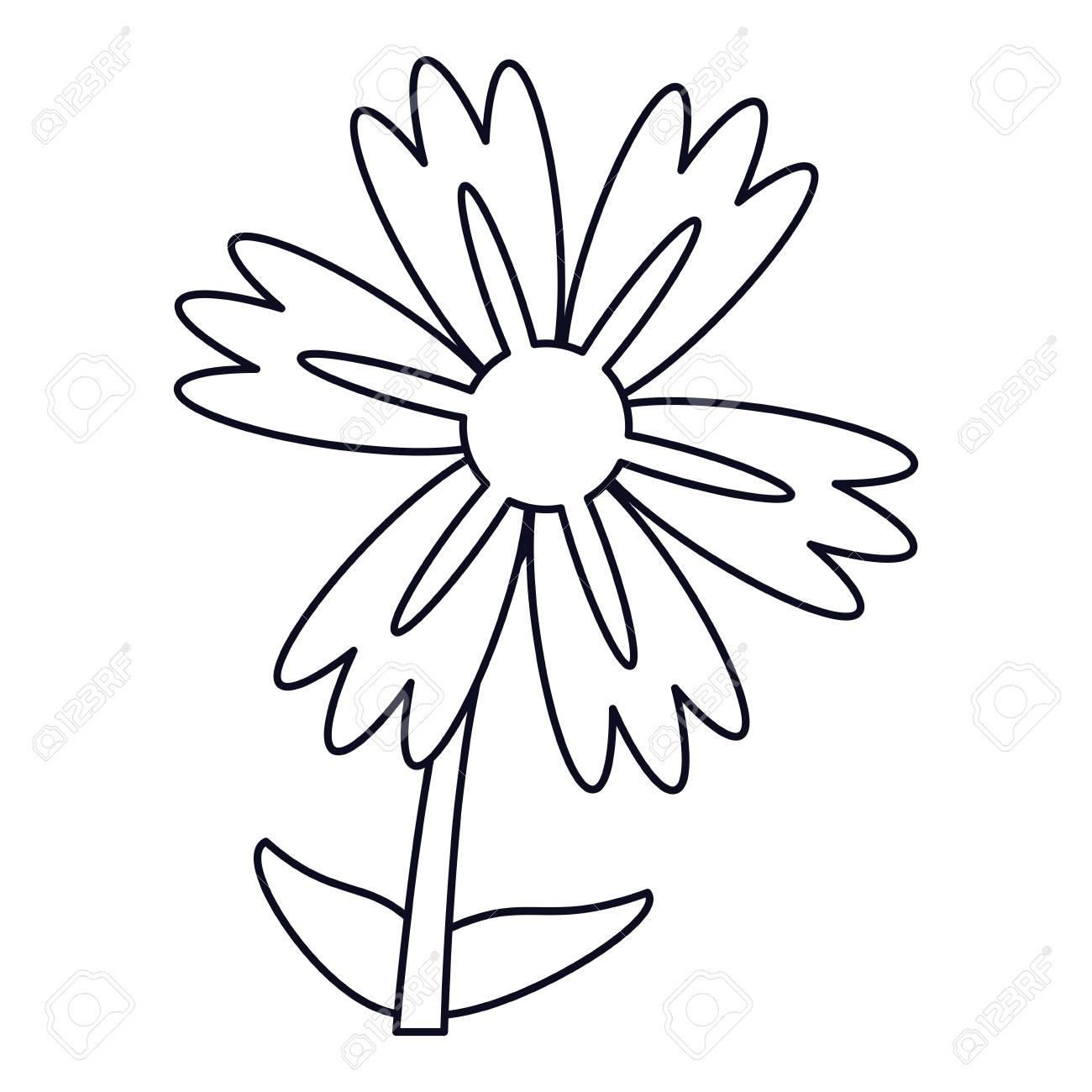 Lily Flower Natural Outline Vector Illustration Eps 10 Royalty Free