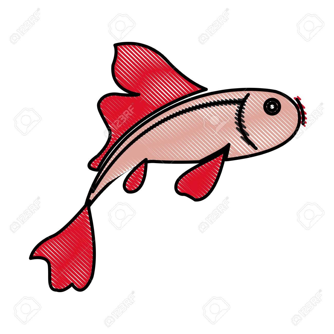 Drawing Fish Koi Chinese Animal Asian Decorative Vector Illustration ...