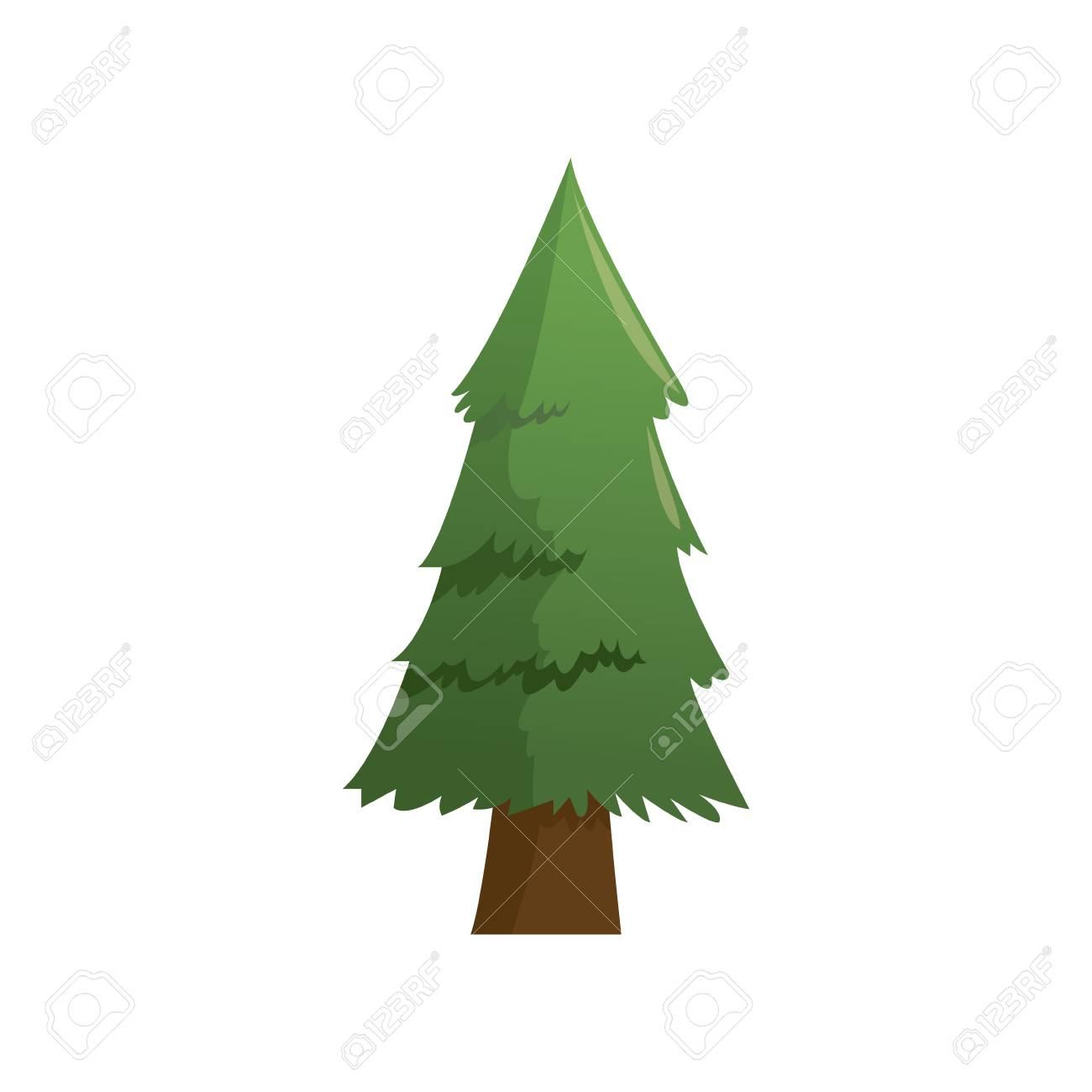Cartoon Pine Tree Natural Plant Conifer Image Vector Illustration Stock