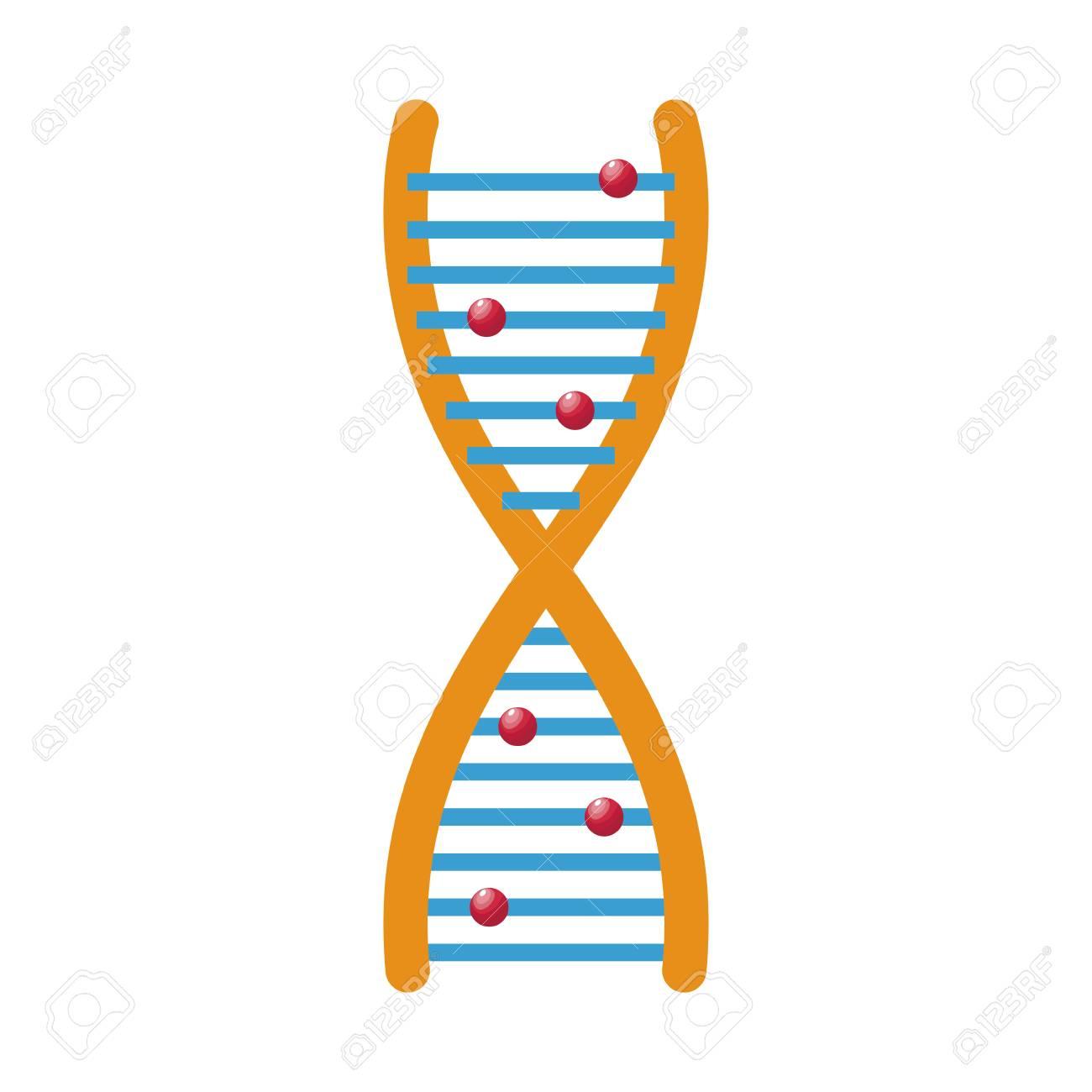 Human Dna And Molecule Symbol For Medicine Genetics Chemistry