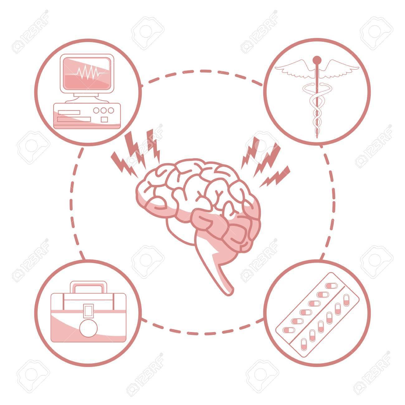 Fondo Blanco Con Secciones De Color Rojo Del órgano Del Cerebro ...