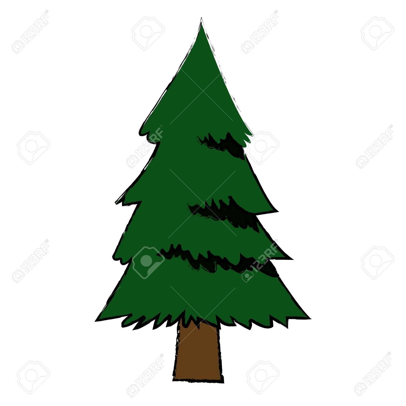 pine tree foliage trunk forest vegetation icon vector illustration rh 123rf com vector pine trees silhouettes free vector pine tree shape