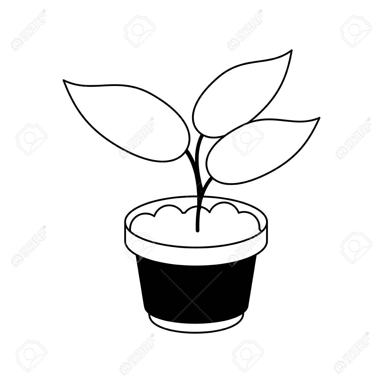 Plante En Pot Icone Image Vector Illustration Design Noir Et Blanc Clip Art Libres De Droits Vecteurs Et Illustration Image 81882440