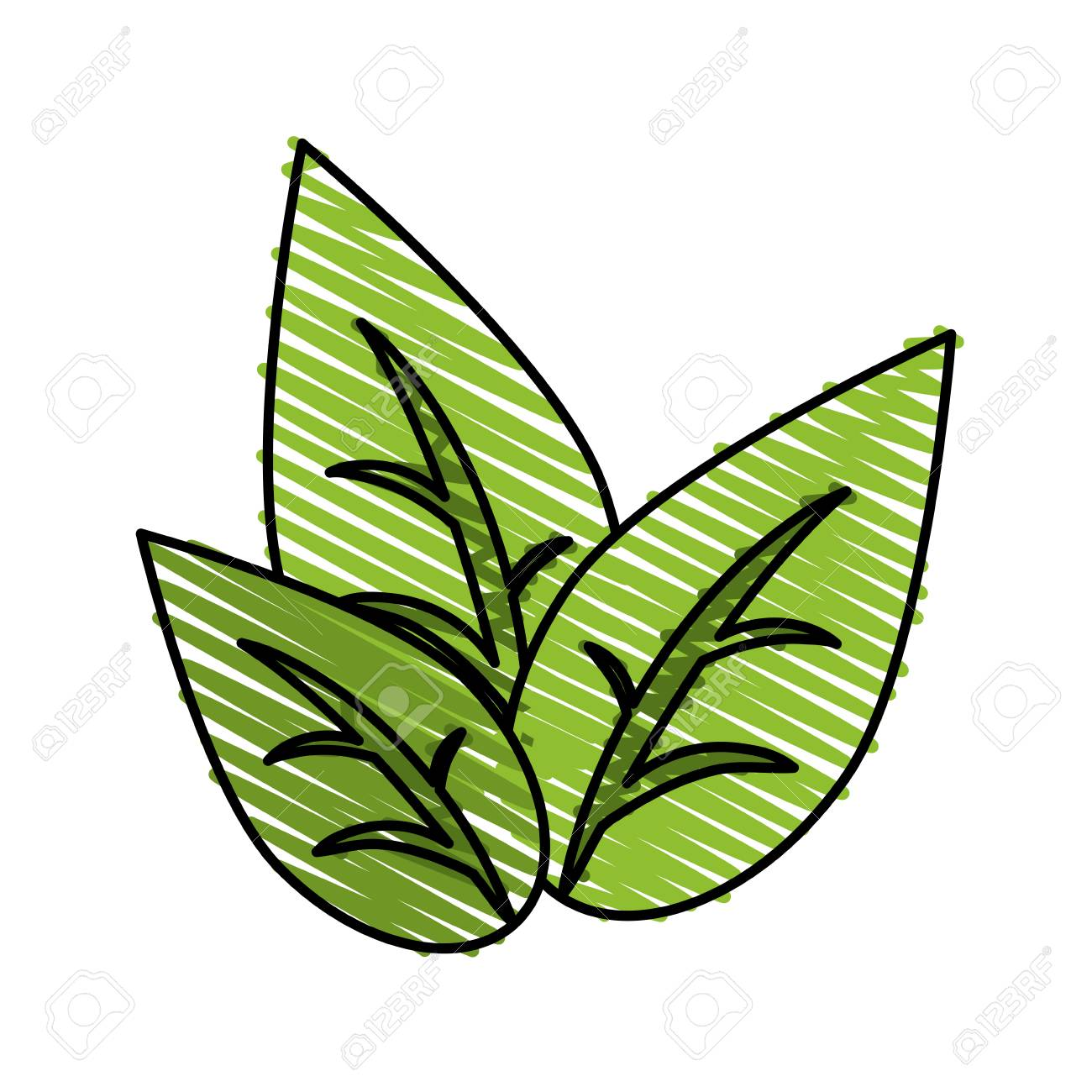 Green Leaves Doodle Over White Background Vector Illustration Royalty Free Cliparts Vectors And Stock Illustration Image 82191821