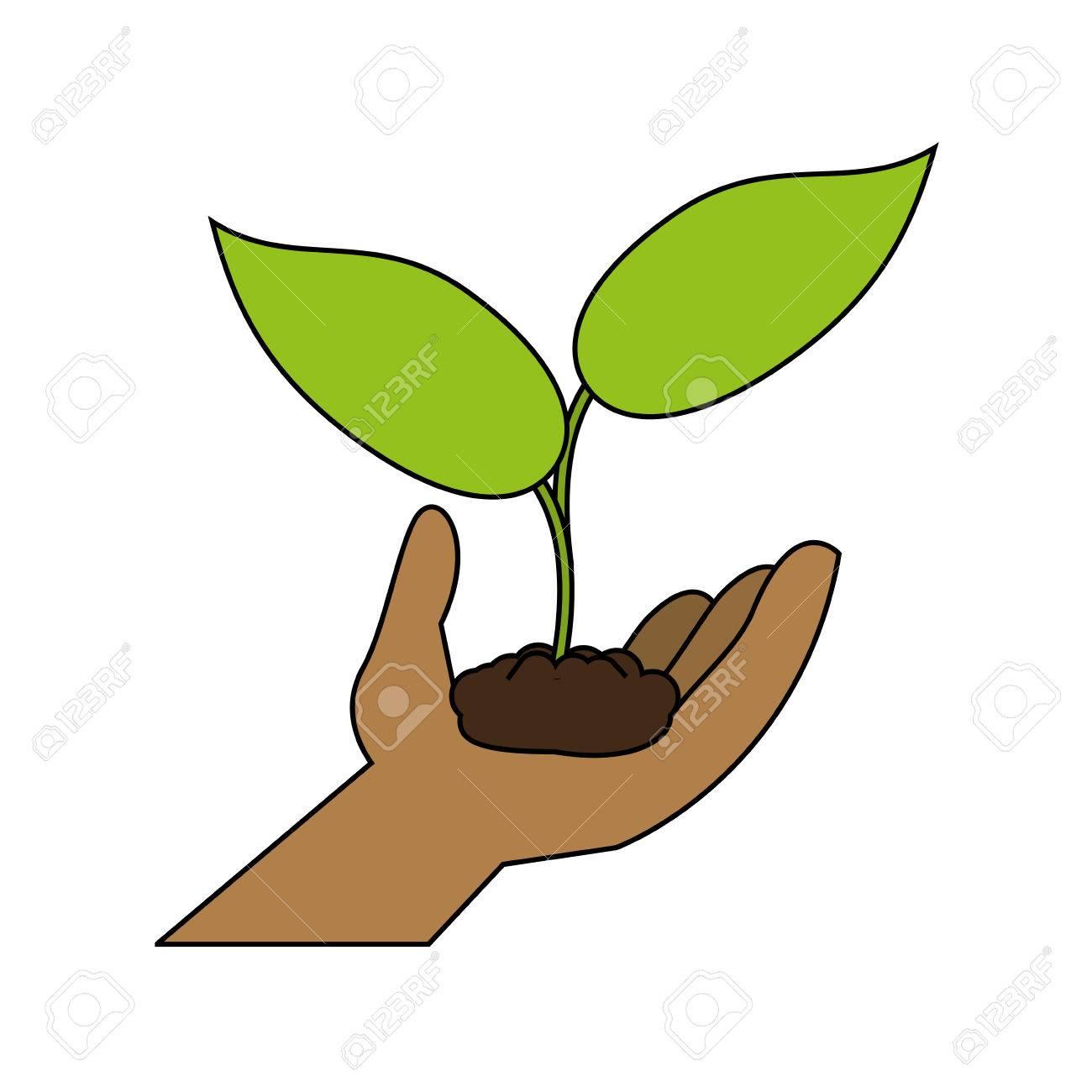 Poca Semilla De La Planta Icono Ecológico Ilustración Vectorial ...