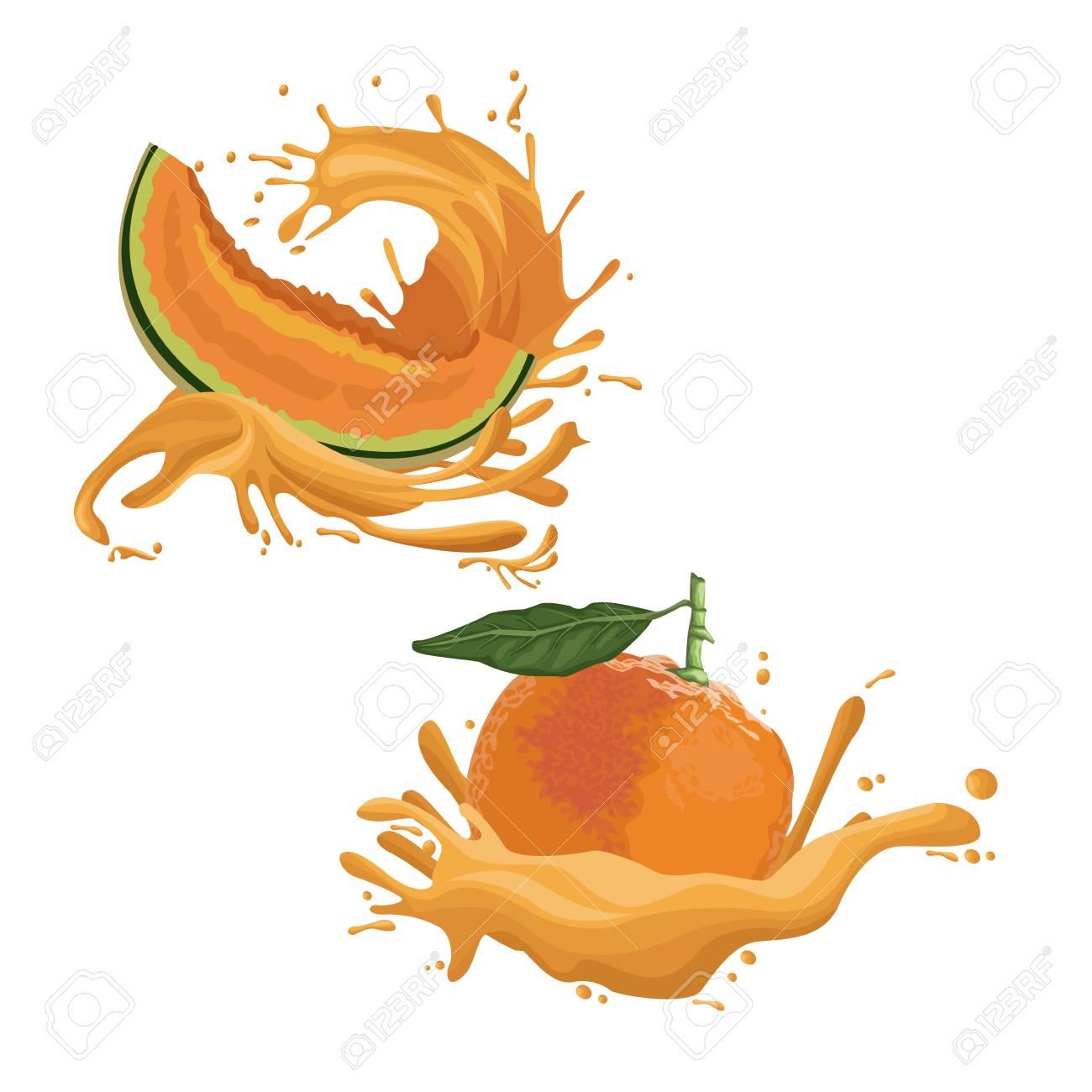 melon and orange fruit splash icon vector illustration graphic rh 123rf com