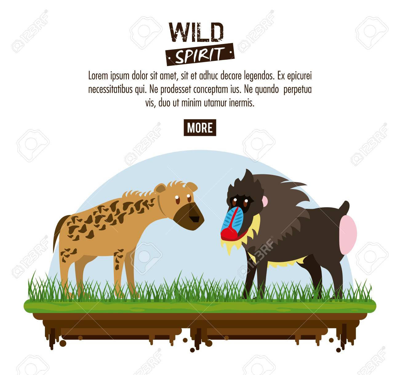 hyena and mandrill wild animals poster with information vector