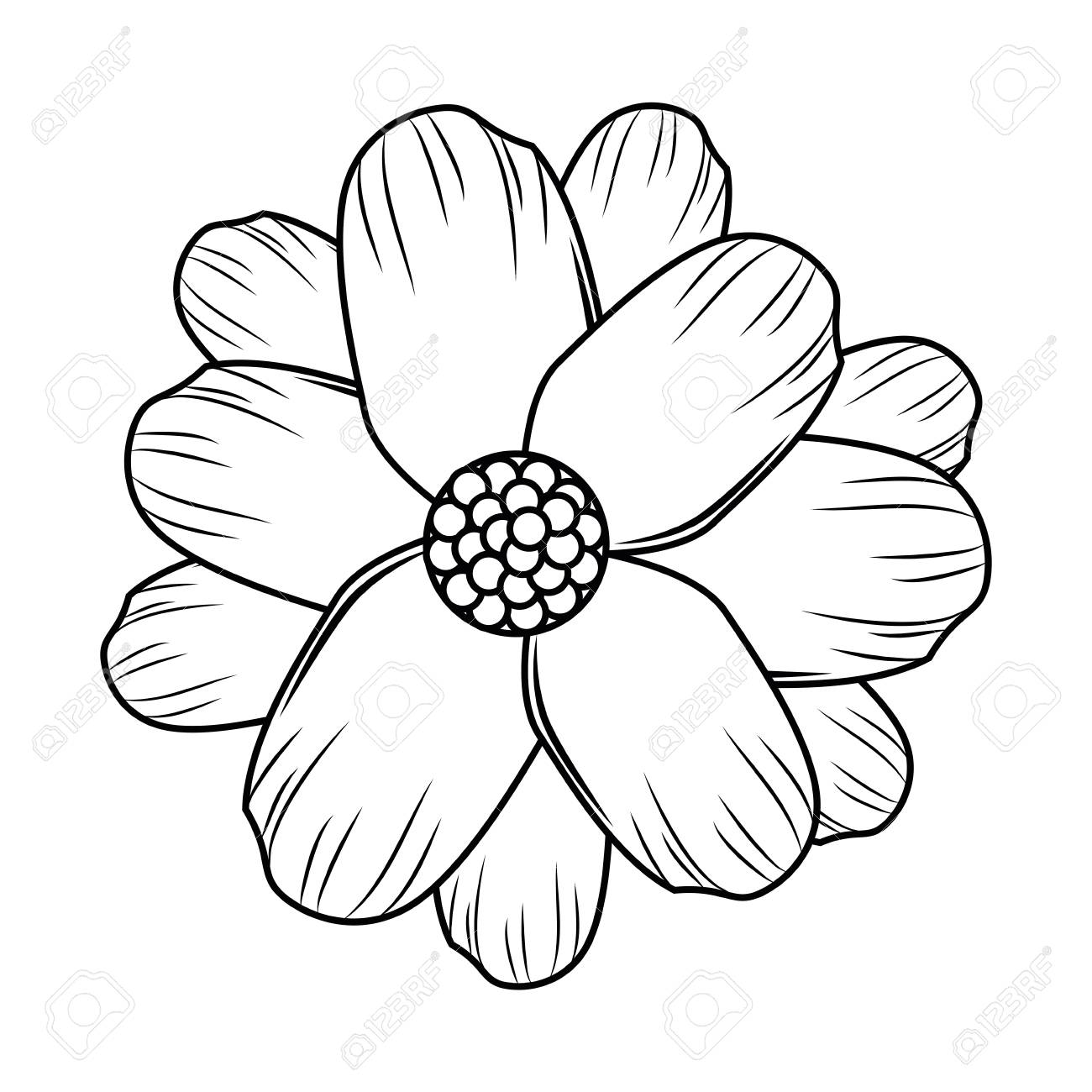 Flower Symbol Cartoon Black And White Vector Illustration Graphic